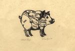 Pig Diagram, proof by Tyler, Gillian, (illustrator)